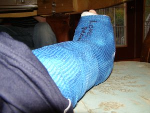 Big Blue Cast